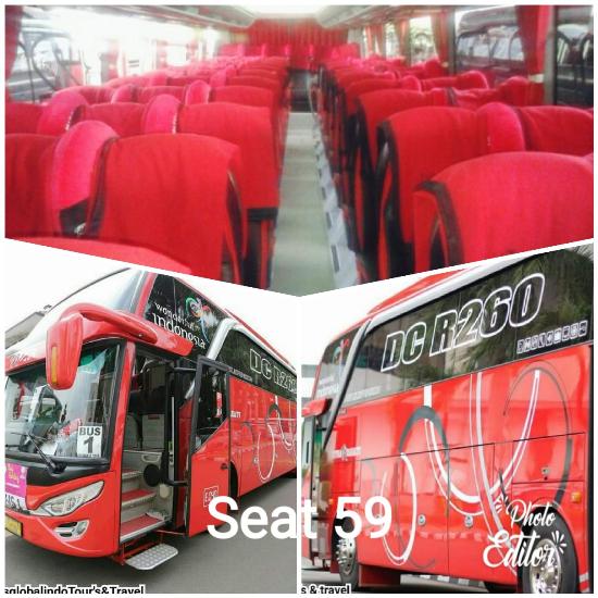 bus 59 seat rental elf bandung